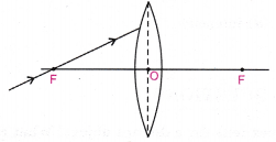 cbse-class-10-science-practical-skills-image-formation-by-a-convex-lens-12