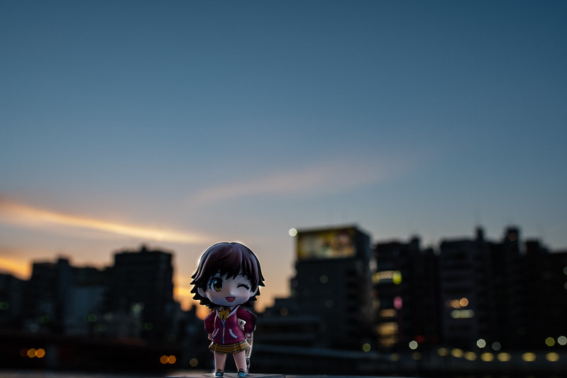 浅草の夜景とねんどろいどを撮影した写真