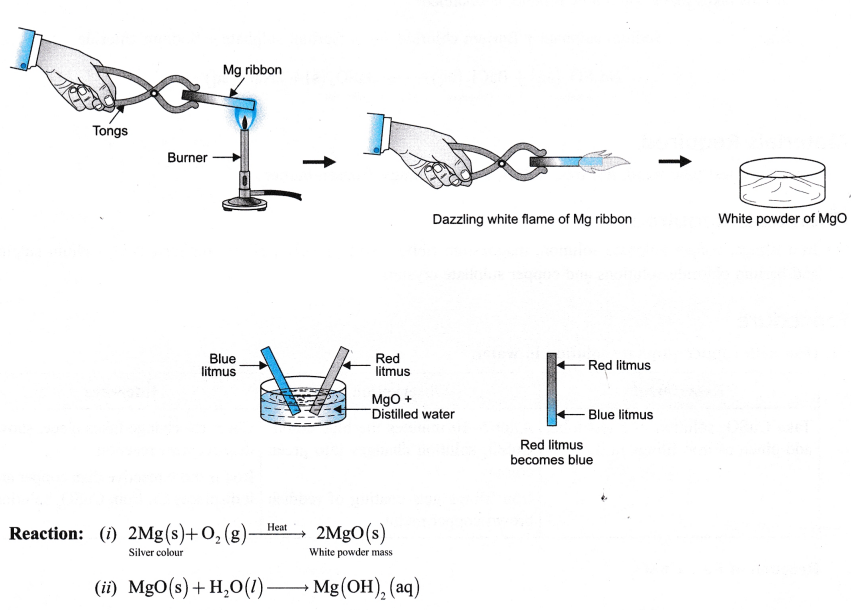 ncert-class-9-science-lab-manual-types-of-reactions-and-changes-8