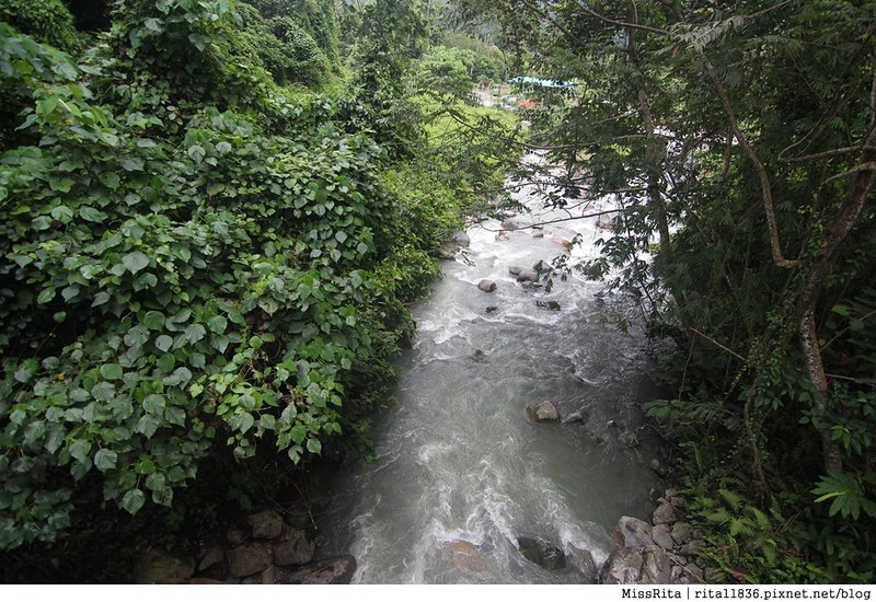 馬來西亞自由行 馬來西亞 沙巴 沙巴自由行 沙巴神山 神山公園 KinabaluPark Nabalu PORINGHOTSPRINGS 亞庇 波令溫泉 klook 客路 客路沙巴 客路自由行 客路沙巴行程52