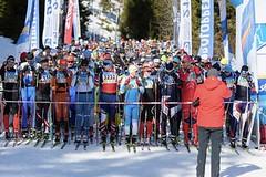 ČT Šumavský skimaraton