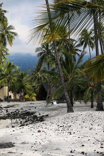puuhonuaohōnaunaunationalhistoricalpark hawaii hōnaunaubay royalgrounds sand palmtrees chiefs keoneelecove sacred ground wyojones