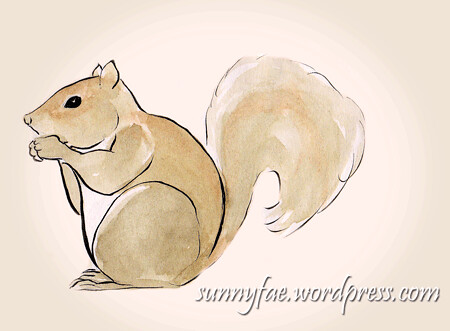 grey squirrel sketch