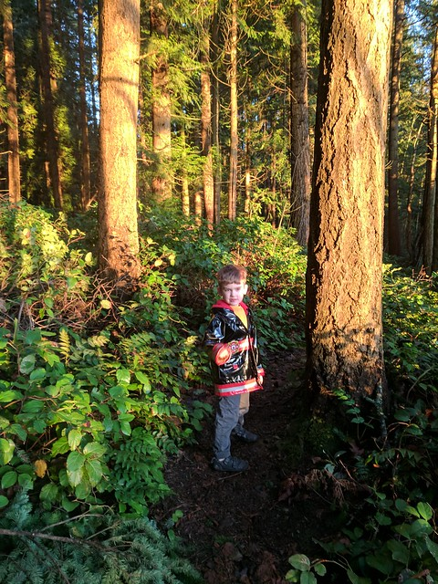Bridle Trails Walk: Benji