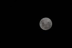 2018-01-31 Super Blue Blood Moon