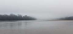 Sangha river, CAR