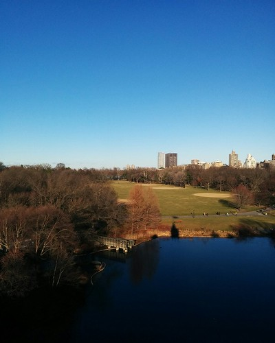 Looking north across Turtle Pond #newyorkcity #newyork #manhattan #centralpark #skyline #turtlepond #belvederecastle #winter #latergram