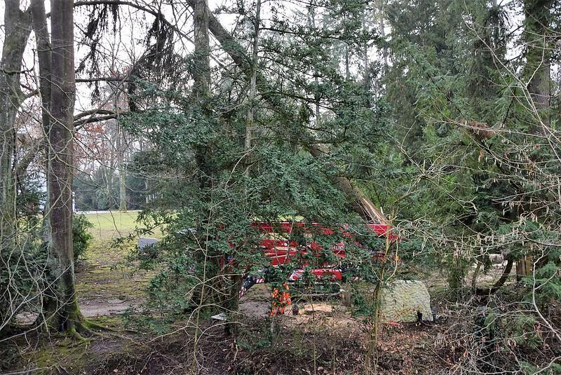 Feldbrunnen village 09.01 (25)