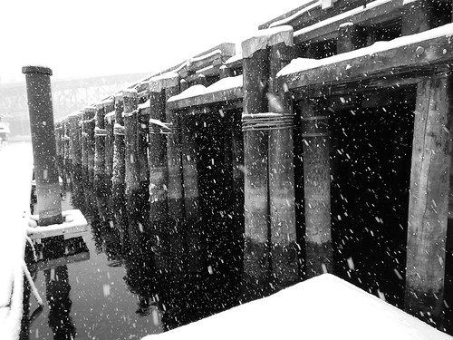 Down at the ferry docks, a snow day in Vancouver