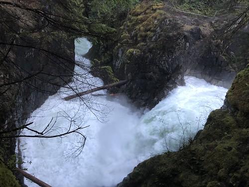 Tofino - Qualicum Falls water