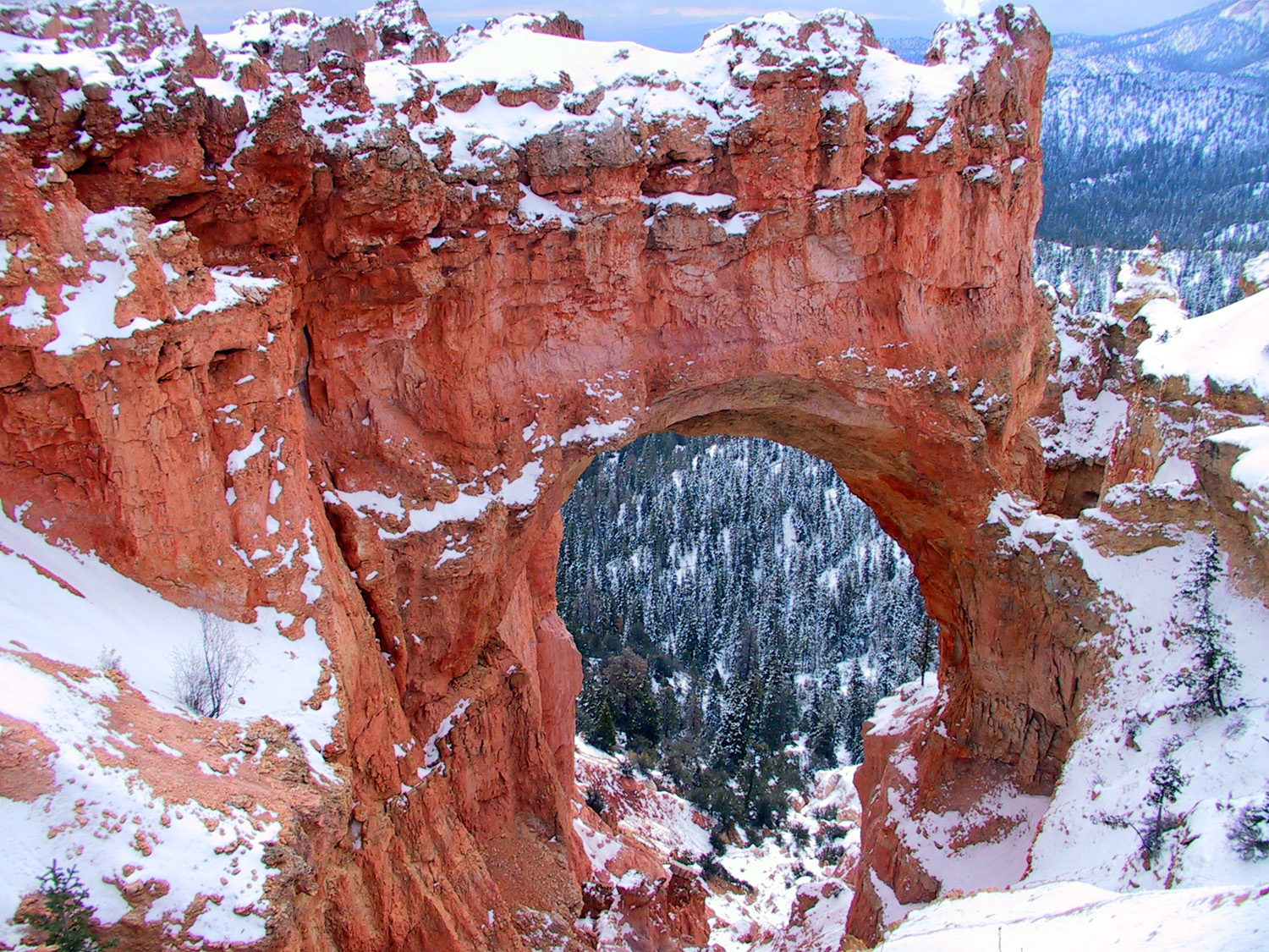 Natural bridge in Bryce Canyon National Park.