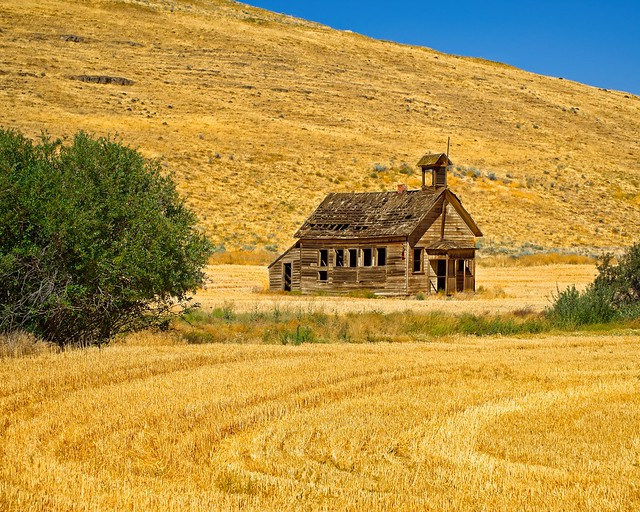 Abandoned Schoolhouse and Wheat field 3443 B