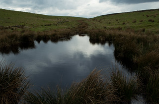 20170330-71_Dundale Pond - Levisham Moor