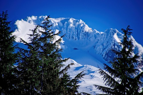 on1pics mounthood oregon governmentcamp blue white green trees nature outdoors 500views