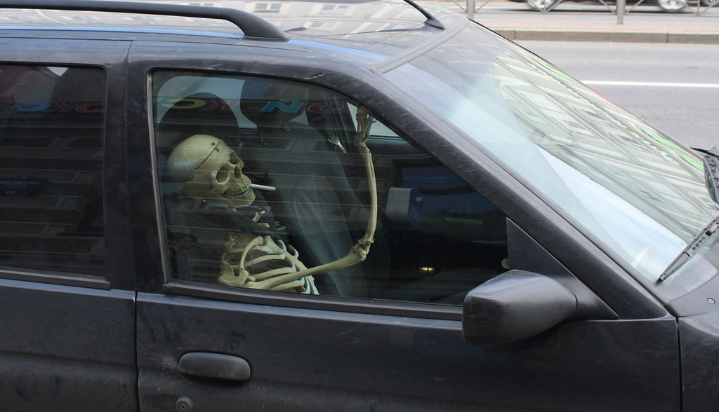 51. Skelet