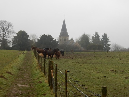 Horses and church