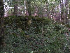 20070903 13078 0710 Jakobus Wald Mauer Grenze Steine Efeu