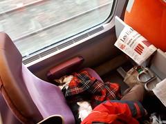 TGV Paris > Rennes
