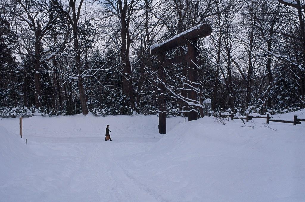 北海道神宮 Sapporo, Japan / Agfa CT Precisa / Nikon FM2 想起這卷底片當初在拍攝的時候因為雪地的關係,整個畫面都有點過暗。  這卷底片在之後天氣好的地方拍起來很美。  雖然常常都把這卷用正片負沖來處理。  Nikon FM2 Nikon AI AF Nikkor 35mm F/2D Agfa CT Precisa 35mm 8704-0013 2016-02-03 Photo by Toomore