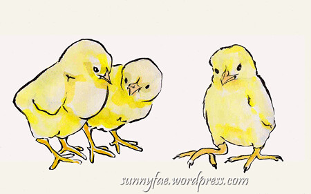 little chick sketches 1