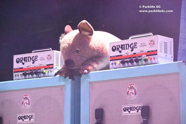 Wombats17