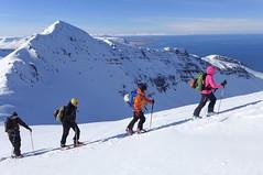 Skitouren auf Island. Foto: Günther Härter.