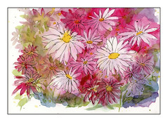 Negative Painting - Pink Daisies Gone Mad (1 of 1)