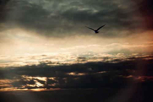 elements sunrise clouds