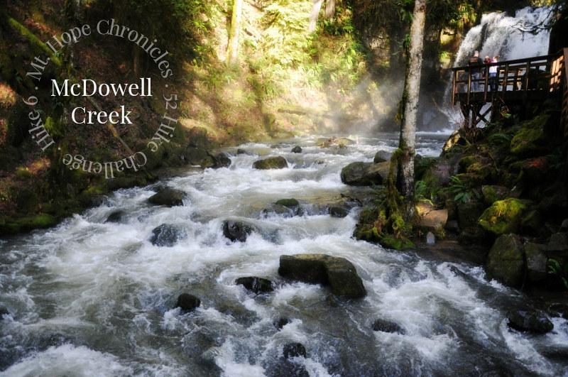 McDowell Creek Falls Loop Hike @ Mt. Hope Chronicles