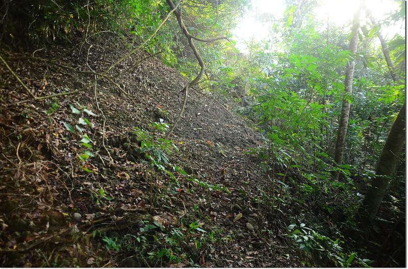 芒果坑山產道小坍方處