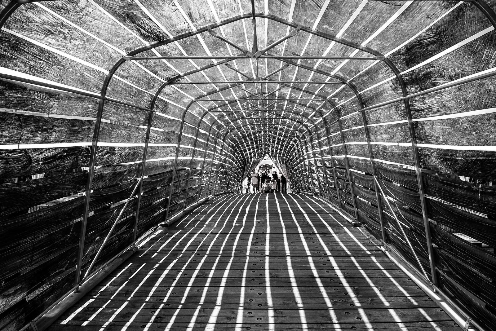 Le tunnel... 39748829254_5f5e3eae74_h