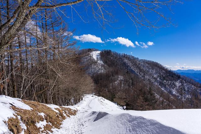 七ツ石山を眺めながらブナ坂へ