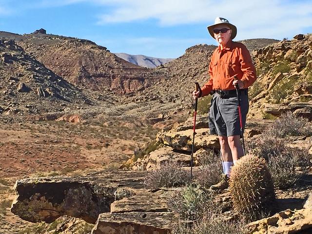 Desert Explorer (Explored)