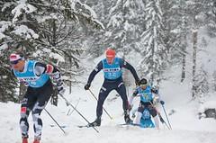Bauer Ski Team v závodě Toblach-Cortina: Skvělé výsledky s hořkou tečkou