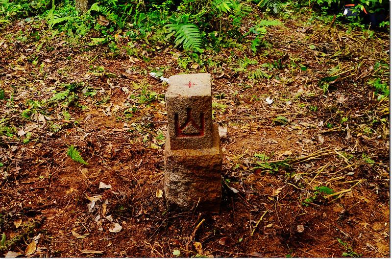 北里龍山補近(18)森林三角點(Elev. 813 m) 2