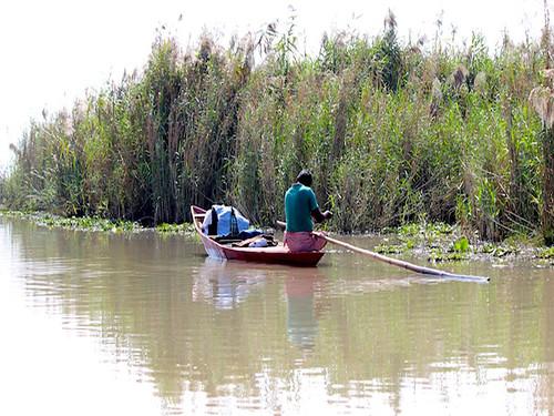 चिल्का झील में मछली पकड़ता मछुआरा