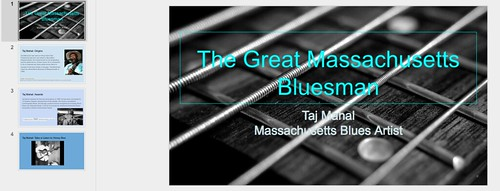 Taj Mahal BluesMan Project