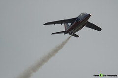 E85 8 F-UGFF - E85 - Patrouille de France - French Air Force - Dassault-Dornier Alpha Jet E - RIAT 2014 Fairford - Steven Gray - IMG_3256