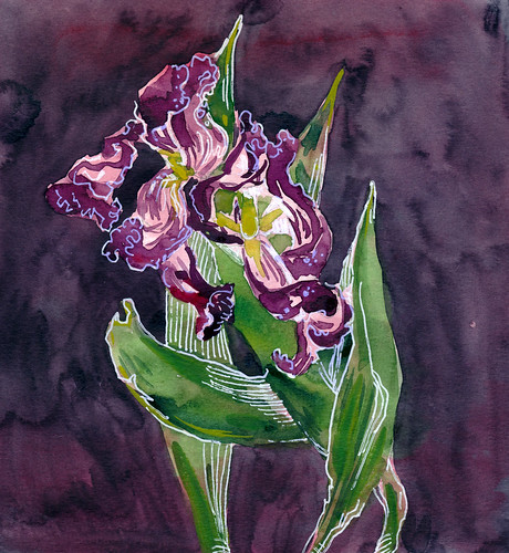 Sketchbook #111: Tulips