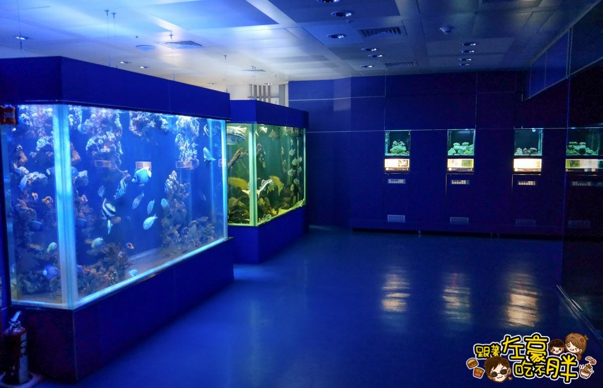 屏東生技園區國際級水族展示廳-21