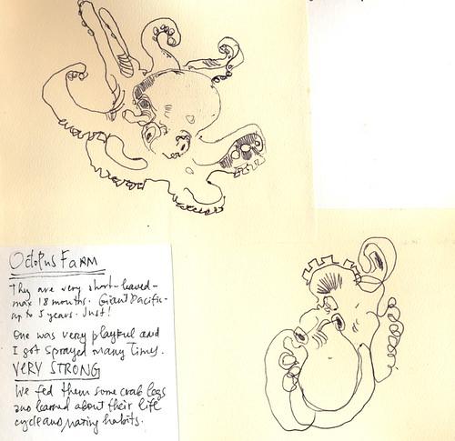 Sketchbook #111: Trip to Hawaii