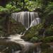 Weeping Rock Leura by Ray Jennings AU