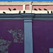 Pigeons 6 por orientalizing