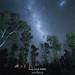 Milky way's core and Magellanic clouds, Tasmania