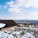 Winter in Vienna by _gate_