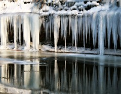 Mill Creek Icicles