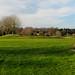 Hurtmore Golf Course-E2010089-Edit