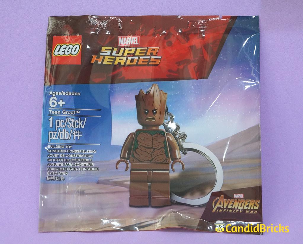 Teen Groot Polybag Front