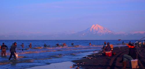 Dipnetting In Kenai Alaska
