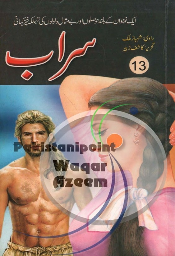 Sarab Part 13  is a very well written complex script novel which depicts normal emotions and behaviour of human like love hate greed power and fear, writen by Kashif Zubair , Kashif Zubair is a very famous and popular specialy among female readers
